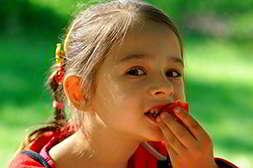 Мини ферма помидоры натуральный продукт