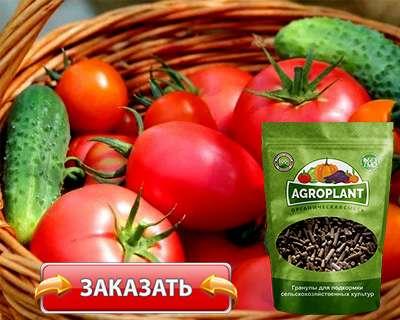 Купить агроплант по доступной цене