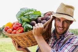 Повышаются сборы урожая всех видов растений с Гардемакс.