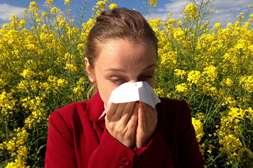 Средство Симбиотик пробилакт прекращает сезонные аллергии.